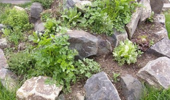 Introduction to Urban Permaculture
