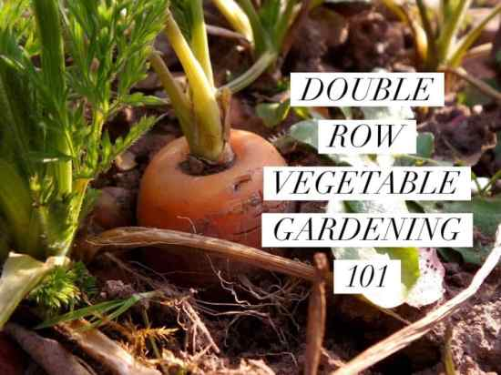how to make double row vegetable garden