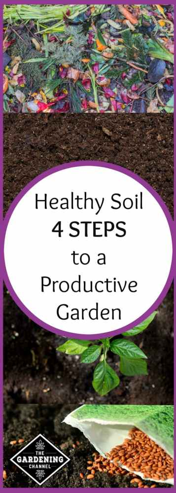 four steps to healthy productive soil