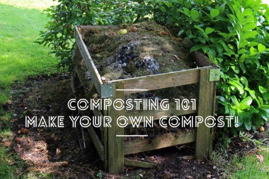 composting 101 compost bins