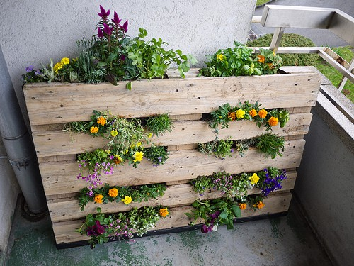 10 Diy Garden Ideas For Using An Old Pallet Gardening Channel