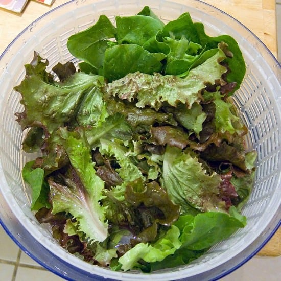Growing salad greens will save you money