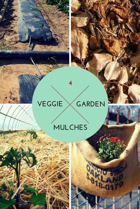 best mulches for vegetable gardens