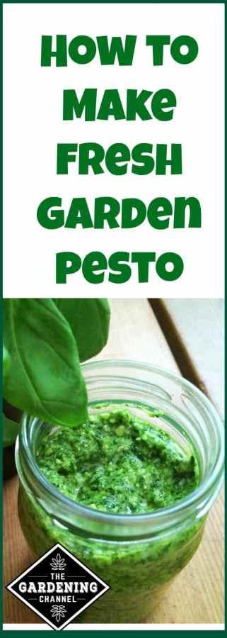 making garden pesto