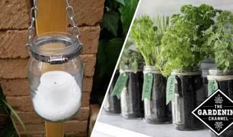 7 Brilliant Mason Jar Gardening Ideas