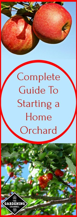 complete guide to home orchard