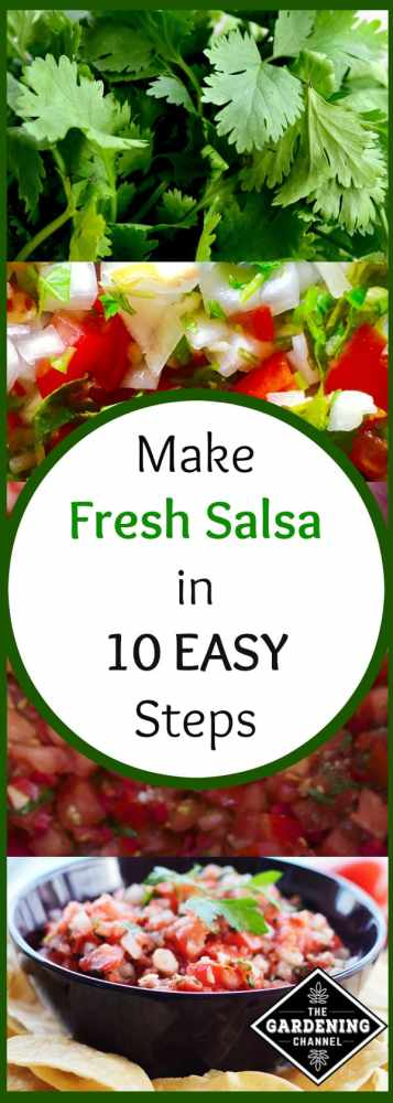 Make your own fresh salsa from your vegetable garden in ten easy steps. Plus, don't miss the canning instructions to preserve your fresh garden salsa.