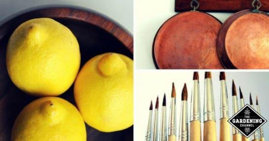 Surprising Uses for Lemons