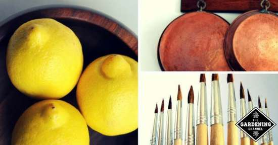 Surprising Uses for Lemons