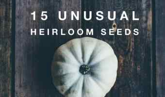 15 Fun and Unusual Heirloom Seeds