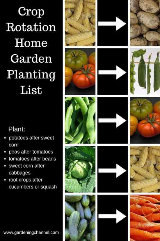 Home Garden Crop Rotation Reference Sheet