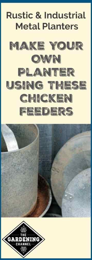 container gardening rustic chicken feeder planters