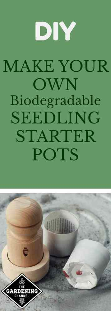 newspaper seedling starter pots how to make