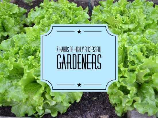 7 habits of successful gardeners