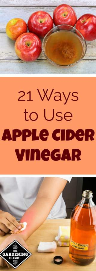 21 household uses for apple cider vinegar