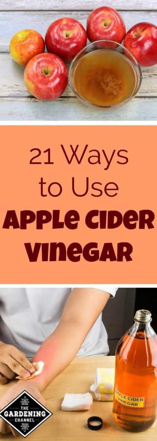 21 household uses for apple cider vinegar