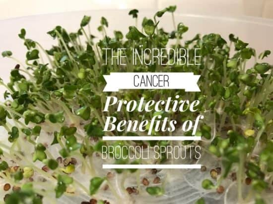 broccoli sprouts health benefits
