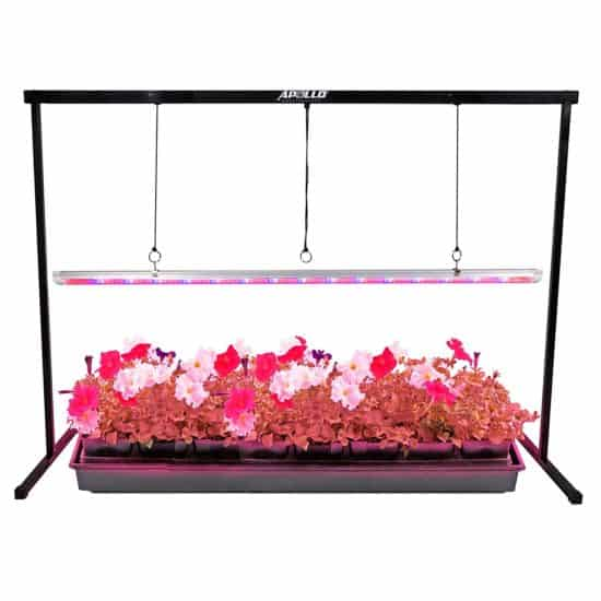 seedling grow lights vegetable