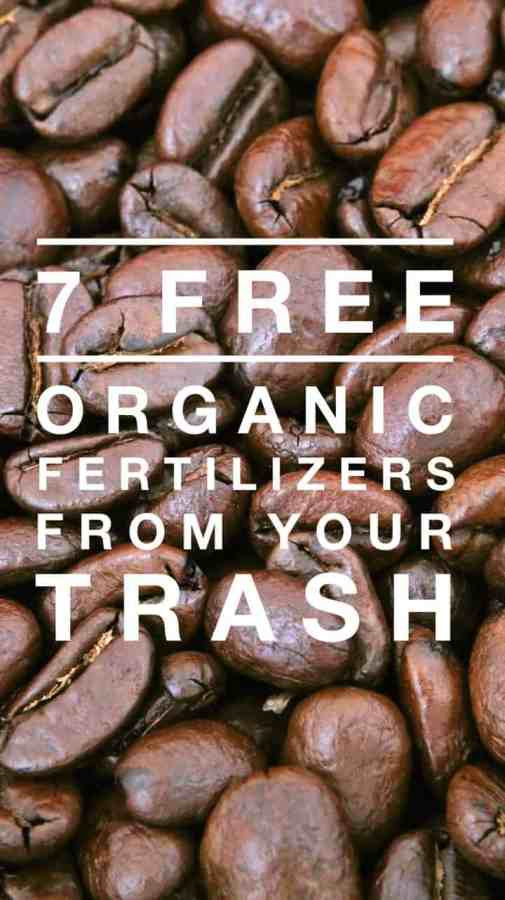7 Organic Fertilizers You Might be Throwing Away