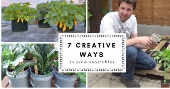 7 creative ways to grow vegetables