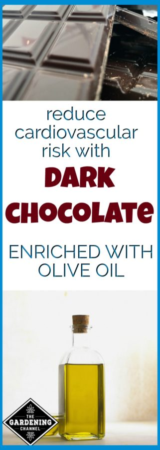 dark chocolate with olive oil