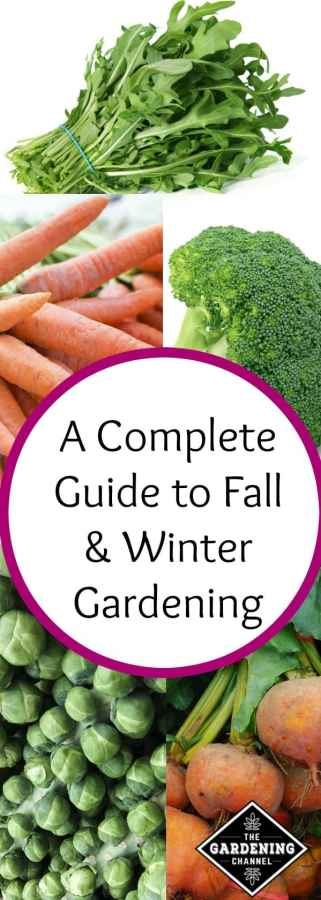 Fall & Winter Gardening a Complete Guide