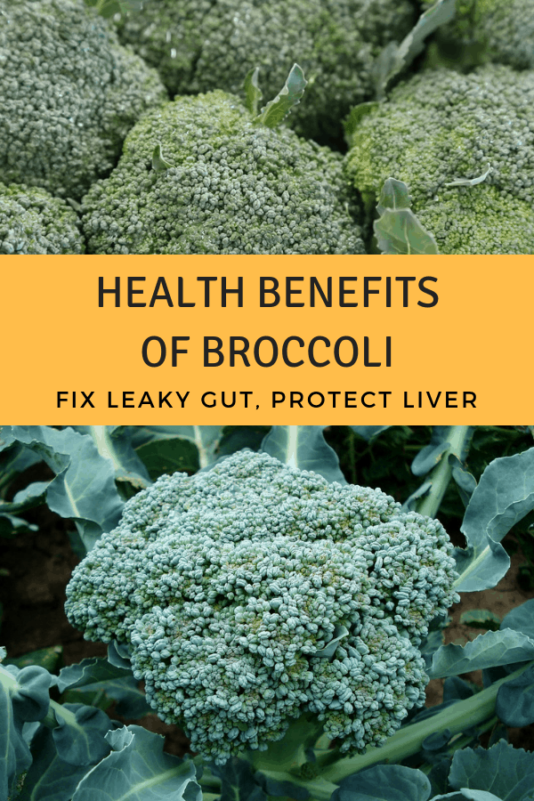 harvested broccoli and broccoli in garden with text overlay health benefits of broccoli fix leaky gut protect liver