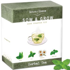 tea grow kit