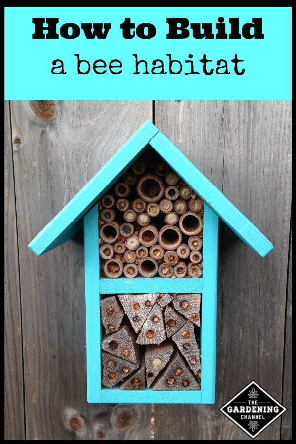 bee house on fence with text overlay how to build a bee habitat