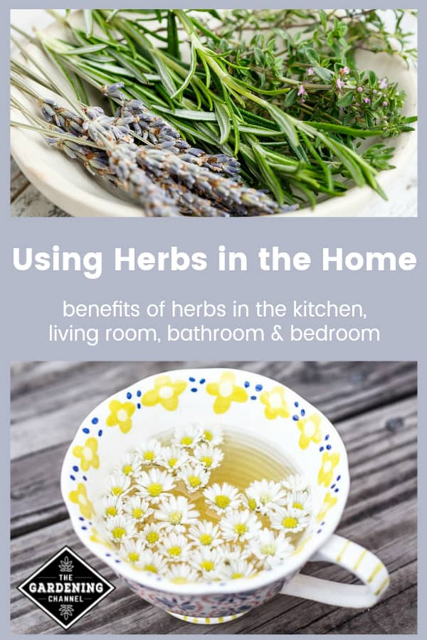 harvested herbs in dish and herbal tea with text overlay using herbs in the home benefits of herbs in the kitchen, living room, bathroom and bedroom