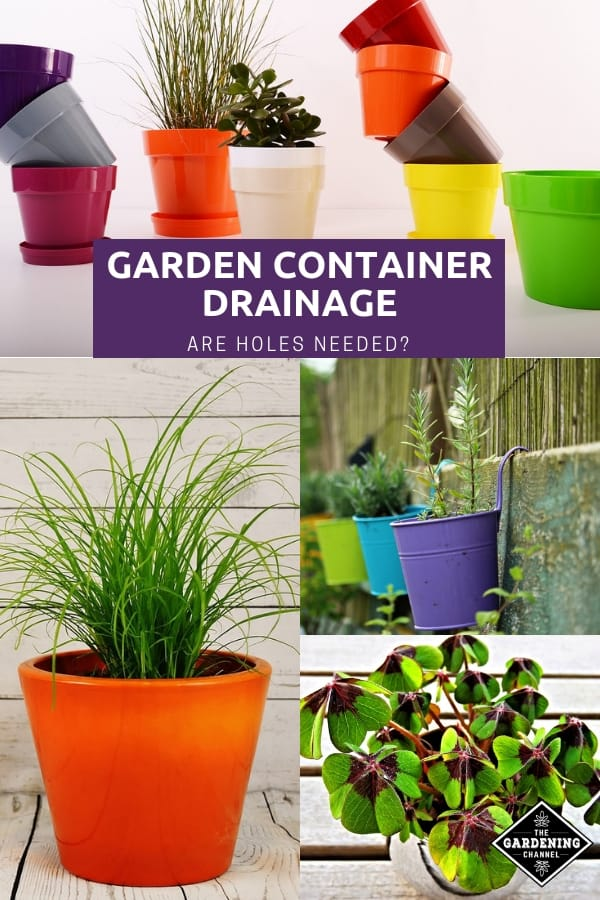 garden containers and potted plants with text overlay garden container drainage are holes needed