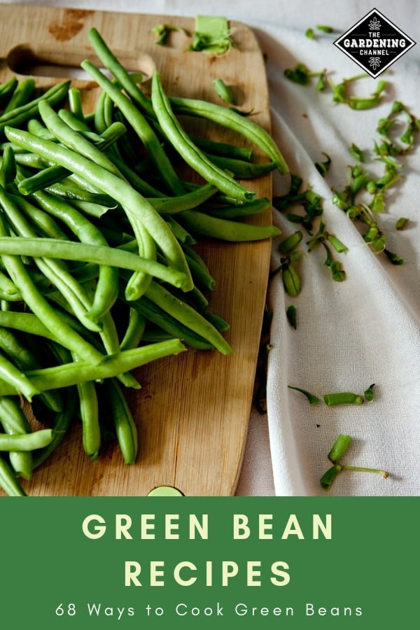 green beans on cutting board with text overlay green bean recipes sixty eight ways to cook green beans