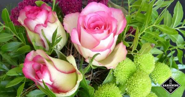 florists tips for long lasting flower arrangements