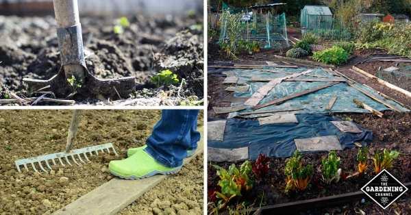 preparing garden beds for fall