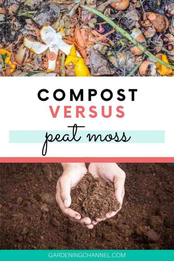 compost hands holding peat moss with text overlay compost versus peat moss