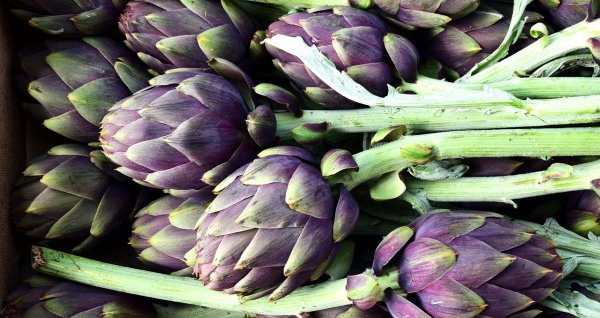 how to preserve fresh artichokes