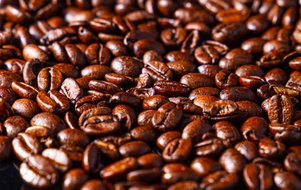 Excelsa Coffee Bean