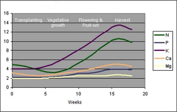 plant rate diagram
