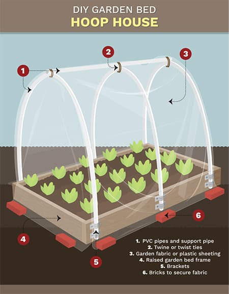 garden bed hoop house