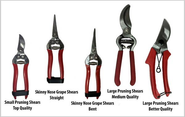 pruning tools sizes