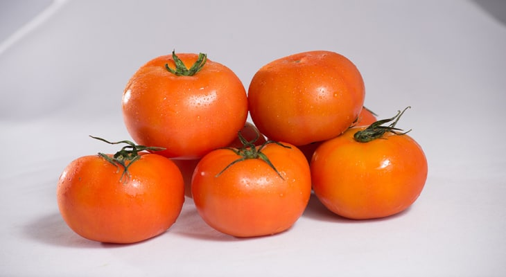 Jet star tomato