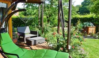 green backyard garden