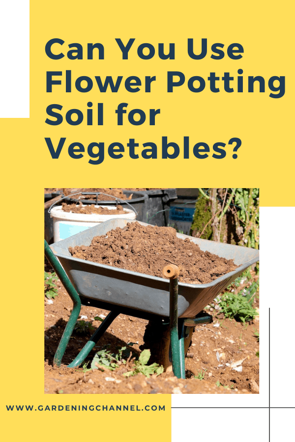 soil in wheelbarrow with text overlay can you use flower potting soil for vegetables