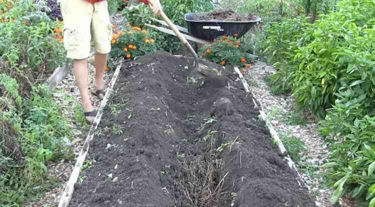 Building a core garden bed