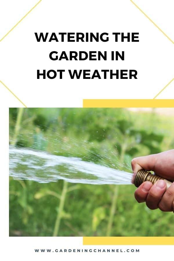 waterhose garden with text overlay watering the garden in hot weather