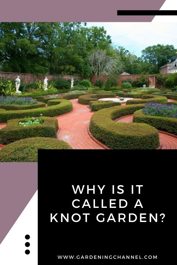 knot garden landscaping with text overlay Why is it called a knot garden?