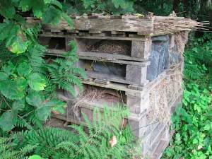 Garden friendly insect and animal house