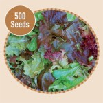 Mixed Salad Baby Leaf 500 Seeds, £2.99