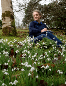 Valentines Day Flower Count at Lanhydrock - national Trust