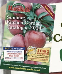 Marshalls Summer Kitchen Garden Catalogue 2014
